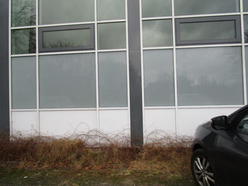 Turnhalle Ehnernstr. nachher 003 scaled